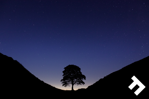 Unlearn The City - Sycamore Gap