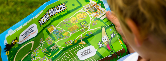 be-amazed-at-york-maze