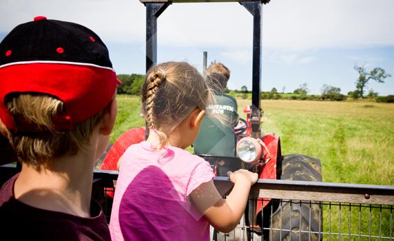 fun-at-whitehouse-farm