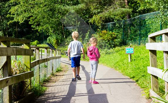 washington-wetland-centre